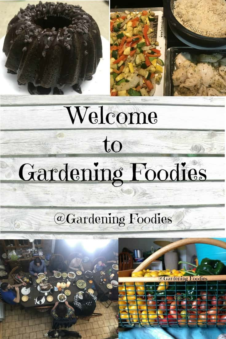 Welcome to Gardening Foodies.  A middle of the road place where I want to save you time while getting back to basics.  Good food doesn't have to be complicated.  Extra bonus if you can find a little dirt or a couple pots and grow some of your own.  It can be done.  All by saving you time and money.  So pull up a chair and enjoy the ride with us.