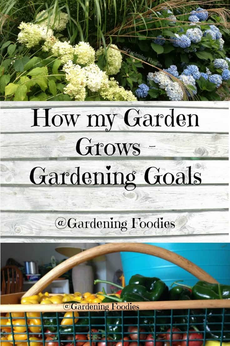 Creating Gardening Goals is both fun and rewarding.  It also serves as a guiding light in determining what you grow and how it's placed. Check out our long term goals for our garden and then see what you can do.  Come check out gardeningfoodies.com for even more.