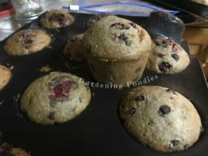 strawberry chocolate chip muffins with gardening foodies